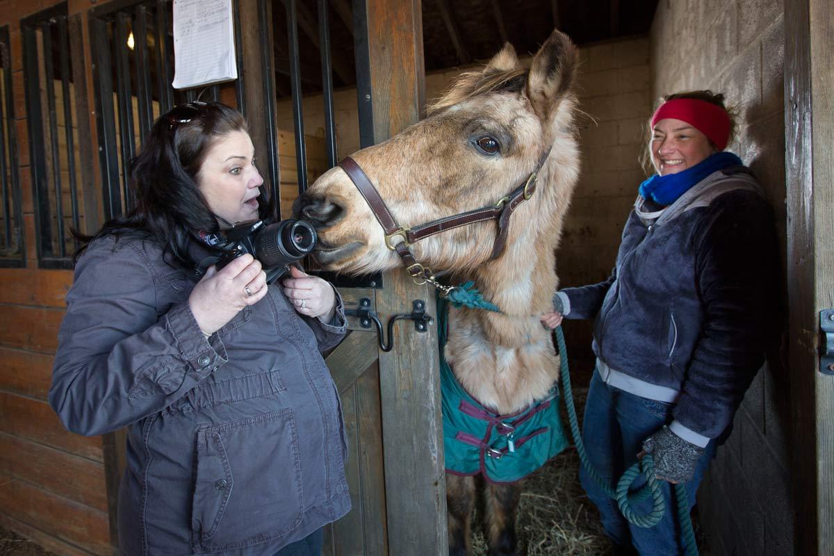 Volunteers Describe Horrific Horse Starvation