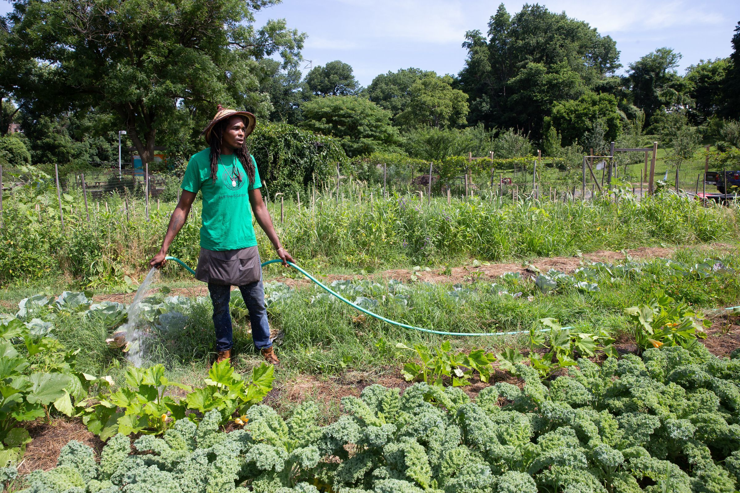 philly.com - Frank Kummer - Urban farming in Philadelphia to get growing with a plan that includes hundreds of vacant lots